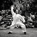 Master Wang Anlin Wenshengquan KungFu.jpg
