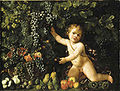 Master of the Acquavella Still Life - Grapes on the vine, pomegranates, grapes, and rosehips in a basket with other fruit by a putto.jpg