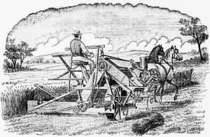 Great Depression of British Agriculture - An 1884 drawing of an American farmer with a reaper-binder.