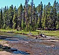 Meadow on Gibbon River, Yellowstone 9-11 (14922654037).jpg