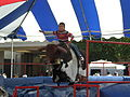 Mechanical bull at 2008 San Mateo County Fair 2.JPG
