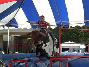 The Amazing Race 1 (China) - While in Texas, racers had to ride a mechanical bull in order to receive one of their clues.
