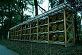 Meiji shrine wine barrels.jpg