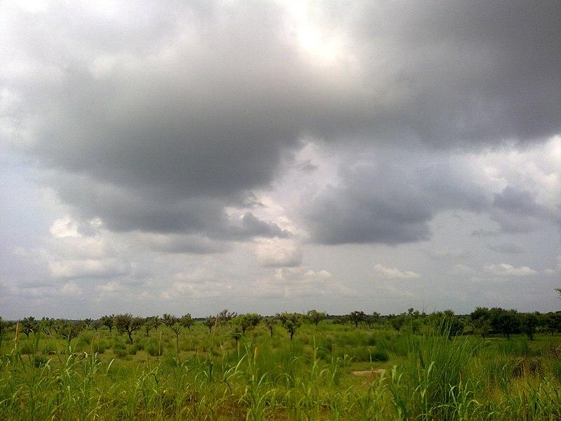 File:Mera Gaon Mera Desh (शिवनाथपुरा) - panoramio.jpg