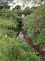Mill Stream - geograph.org.uk - 541683.jpg