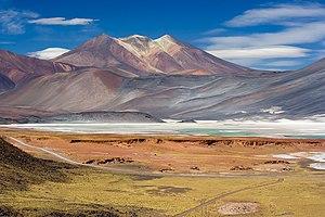 Salar de Talar near San Pedro de Atacama, Chile.