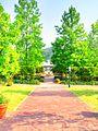 Miyama english garden01.jpg