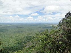 florestas costeiras da bahia � wikip233dia a enciclop233dia livre