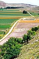 Montejo de la Vega de la Serrezuela 1977 07.jpg