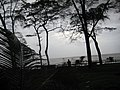 Morning View in the rainy Season, Dahanu Beach - panoramio.jpg