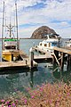 Morro Bay, California, US - panoramio (19).jpg