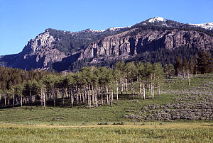 Mount Hornaday - As viewed from Pebble Creek