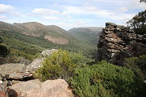 Mount William (Mount Duwil) - Image: Mt William 3