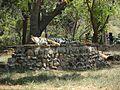 Mysore Zoo 4.jpg