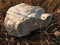 Nódulo de sílex - La mina de sílex Casa Montero.jpg