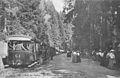 ND 185 - Saut des Cuves - Le tramway de la Schlucht.jpg