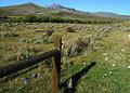 NRCSMT01025 - Montana (4899)(NRCS Photo Gallery).jpg