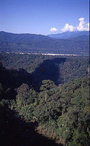 Namdapha National Park - Image: Namdapha 2