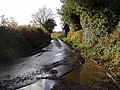 Narfords Lane - geograph.org.uk - 1619625.jpg