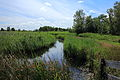 Nationaal Park De Alde Feanen. Locatie, It Wikelslân 025.JPG