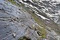 Nationalpark Hohe Tauern - Gletscherweg Innergschlöß - 36 - Gletscherschliff und Ufermoräne von 1859.jpg