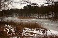 Naturschutzgebiet Blumenthal.jpg