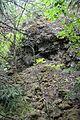 Naturschutzgebiet Steinbruch Holzmühle (19).JPG