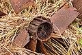 Natuurgebied Petgatten De Feanhoop. 19-10-2020. (actm.) 26.jpg