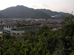 Nishiwaki-shi P9120437.jpg