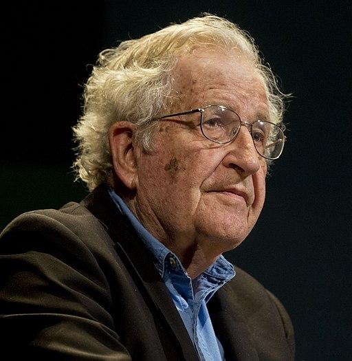 Noam Chomsky portrait 2015