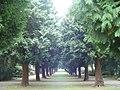 Nordfriedhofkoeln03.jpg