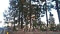 Norwalk, CA, USA - panoramio (3).jpg