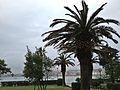 Novalja - panoramio (14).jpg