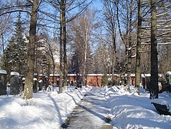 Novodevichy Cemetery in winter