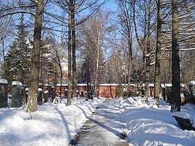 Новодевичье кладбище зимой