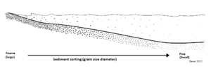 Deposition (geology) - Figure 1. Illustrates the sediment size distribution over a shoreline profile, where finer sediments are transported away from high energy environments and settle out of suspension, or deposit in calmer environments. Coarse sediments are maintained in the upper shoreline profile and are sorted by the wave-generated hydraulic regime