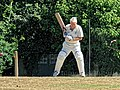 Nuthurst CC v. Henfield CC at Mannings Heath, West Sussex, England 051.jpg