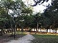 Ohori Park at dusk 20170930-8.jpg