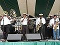 Old Algiers Riverfest 2008 Algiers Brass Band.jpg