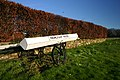 Old Cart at Drumligair - geograph.org.uk - 377723.jpg