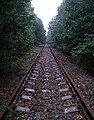 Old railway, Sherwood Pines Forest Park. - geograph.org.uk - 66435.jpg