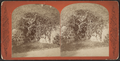 Old tomb near Sylvan Lake, from Robert N. Dennis collection of stereoscopic views.png