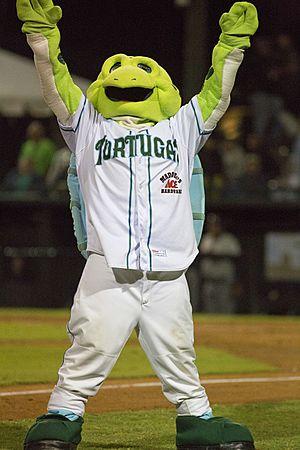 Daytona Tortugas - Picture of Daytona Tortugas mascot, Shelldon, at The Jack