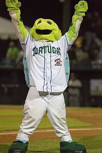 Daytona Tortugas - Picture of Daytona Tortugas mascot, Shelldon, at The Jack