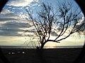 PALIOURA-EPANOMI-THESSALONIKI - panoramio.jpg