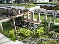 Paddington Reservoir6.JPG