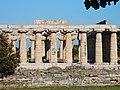 Paestum - Tempio di Hera.jpg