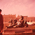 Paolo Monti - Servizio fotografico - BEIC 6364146.jpg