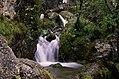 Parco fluviale del torrente Centa.jpg