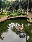 Parque Santos Dumont 2017 028.jpg